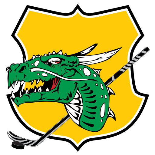 Dragon Lady Hockey School
